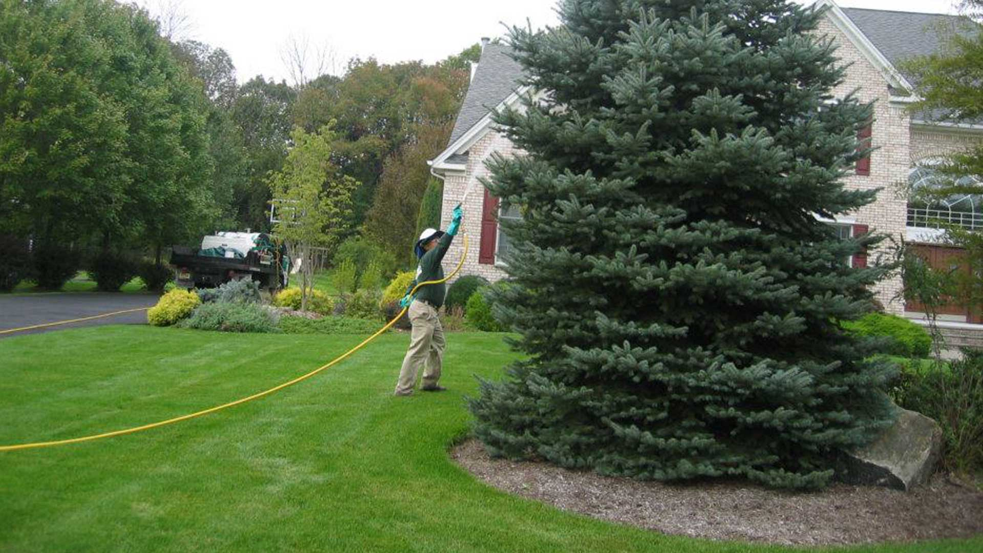 The Lawn Techs employee treating the lawn and trees in Berkeley Heights, NJ.