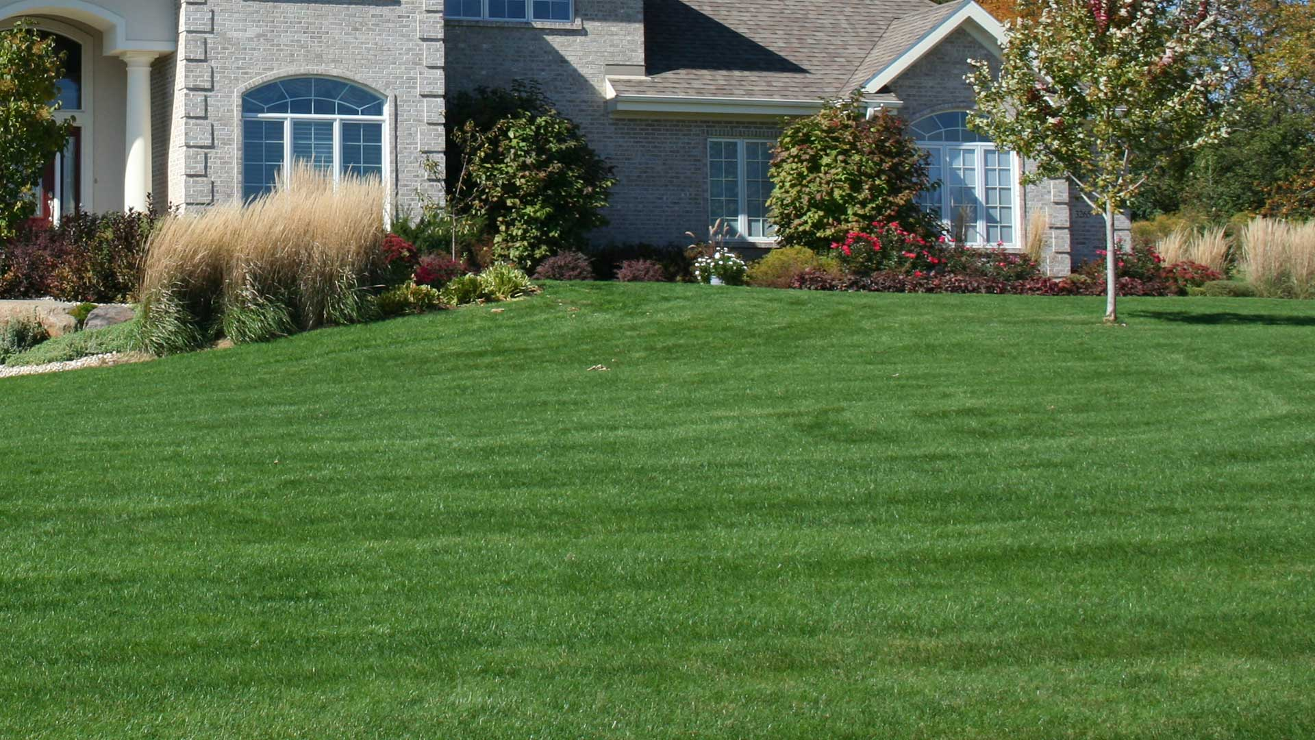 Lawn care services at a residential property in Berkeley Heights, NJ.
