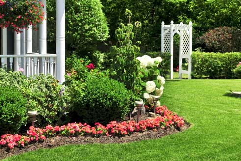 Trees & Shrubs Berkeley Heights, NJ with plant health care services from The Lawn Techs.