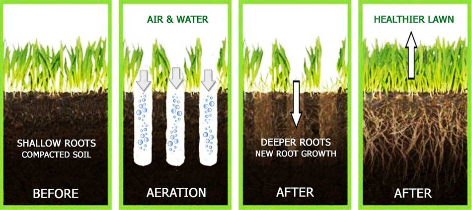 Infographic showing the benefits of aeration.